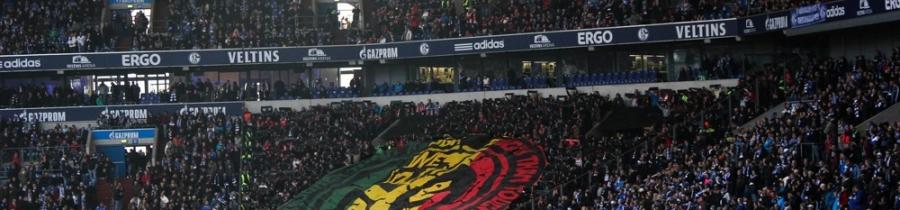 13. Spieltag: FC Schalke 04 - 1. FSV Mainz 05
