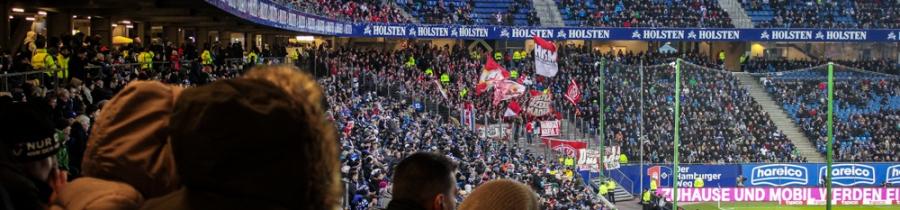 14. Spieltag: Hamburger SV - 1.FSV Mainz 05
