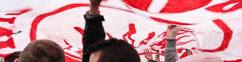 17. Spieltag: Hamburger SV - 1. FSV Mainz 05